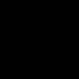 277 negro